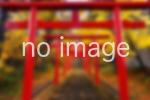 支安平神社